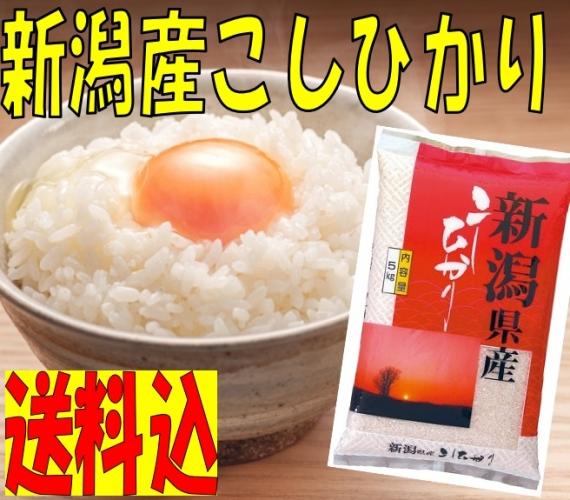 【送料込】 令和2年産 新潟県産こしひかり10�s(5�s×2袋)   新潟 お米 送料込み 米どころ