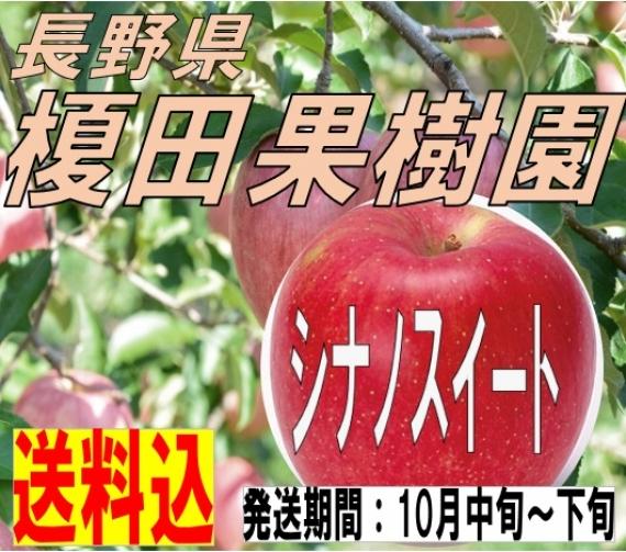 【送料込】 長野県 榎田果樹園 シナノスイート 3�s 美味しいフルーツ 秋のフルーツ 秋の味覚