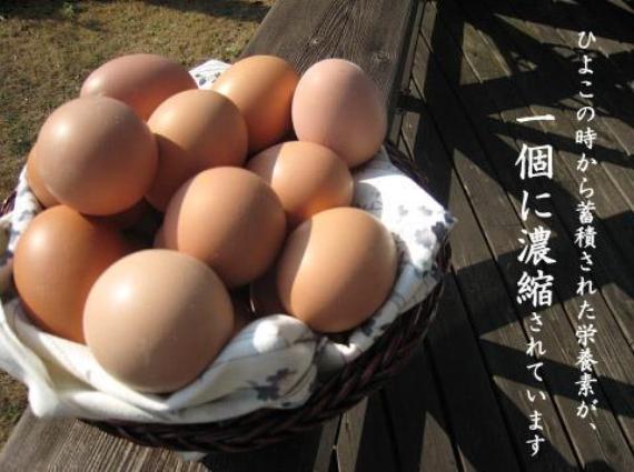 【期間限定1月31日〜2月13日出荷まで】初卵30個入り