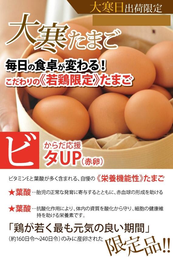 1/20限定出荷!1年の1度の縁起物【大寒たまご】30個入/送料込