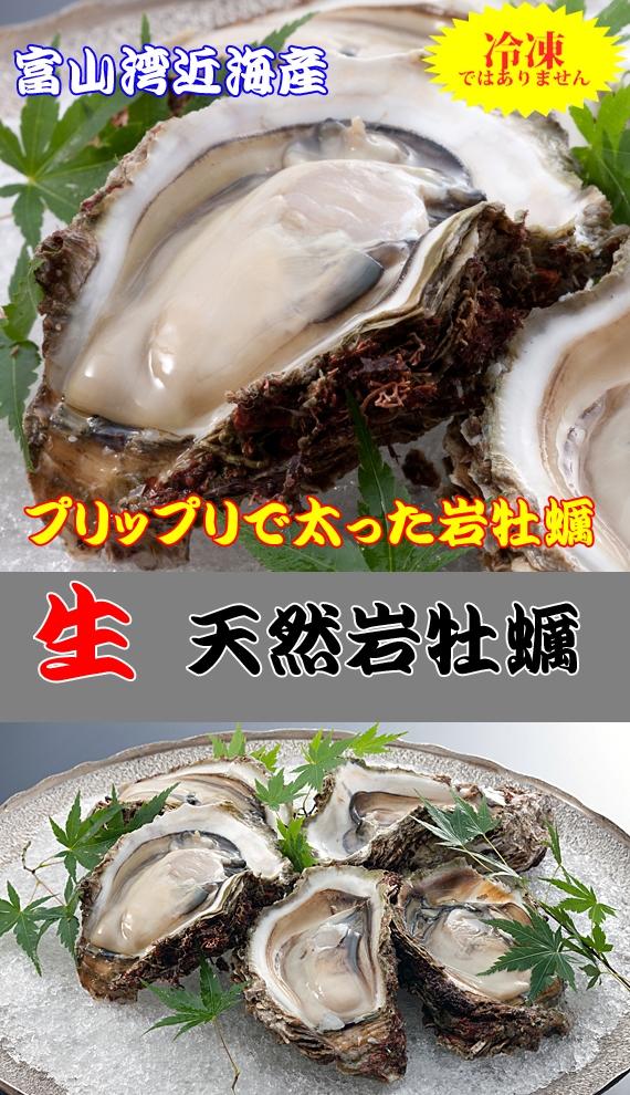 ??▼<<非掲載・企画終了>>▲??終了しました!! 【プレゼントキャンペーン】富山湾から夏しか食べることができない『岩牡蠣』抽選で3名様に