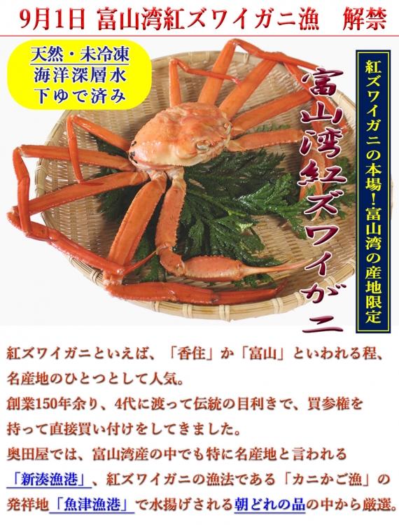 富山湾産 紅ズワイガニ 姿|1杯 サイズ目安:3L(+)900g〜1kg前後未満【各漁港が発行のタグ付き ※例年10月初旬以降】・・・漁獲量は少ないけど、香住がにと並んで品質が良いと人気