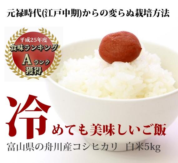 ★富山県舟川産コシヒカリ(白米5kg)【25年産米】