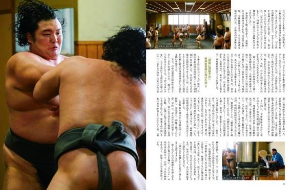 『朝乃山英樹 大器花咲く。』(大相撲幕内初優勝記念グラフ)