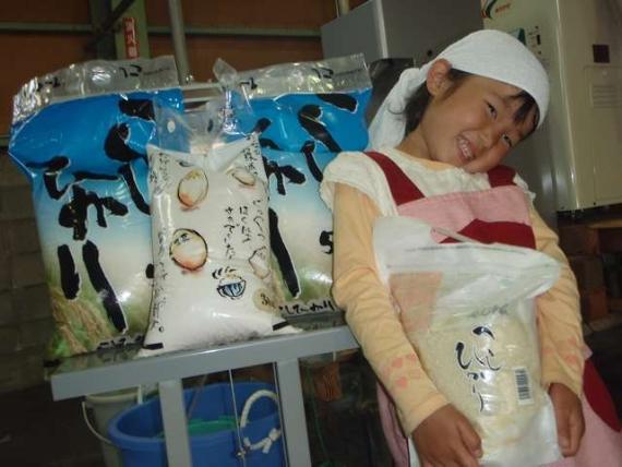【無洗米】  特別栽培米こしひかり【清水米 3kg】