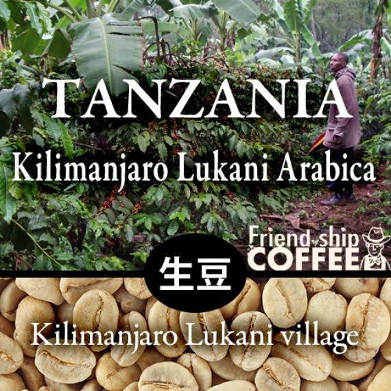 【生豆】〈タンザニア〉キリマンジャロ ルカニアラビカ