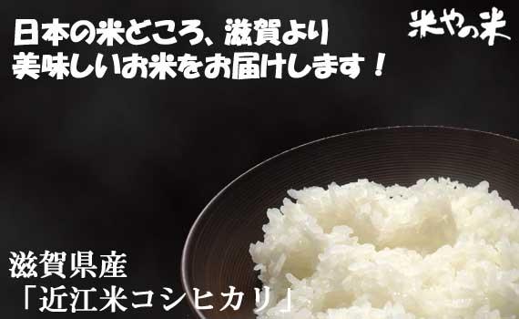 【30年産】 滋賀県産「近江米 コシヒカリ」 10kg(5kg×2)