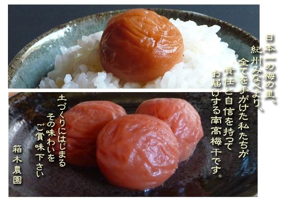 【送料無料】紀州みなべ南高梅干し一貫づくり 紅白セット(シソ漬1kg+うす味1kg)