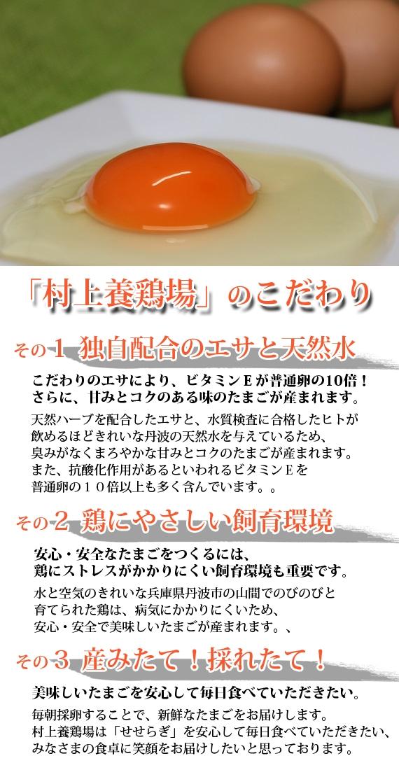 たまごかけご飯がおいしい!村上さんの丹波地玉せせらぎ(50個)【送料込】【卵】【お歳暮2020】