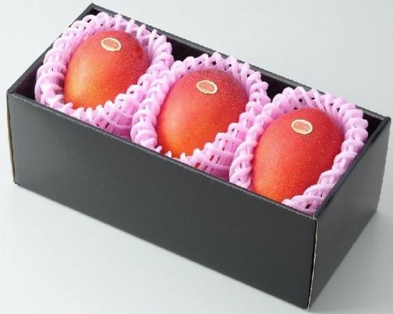 ★「情熱みやざきブランド!」完熟マンゴー(3個入り) B品 2L(350g以上×3個)旨い!一度食べたら忘れられない味です!