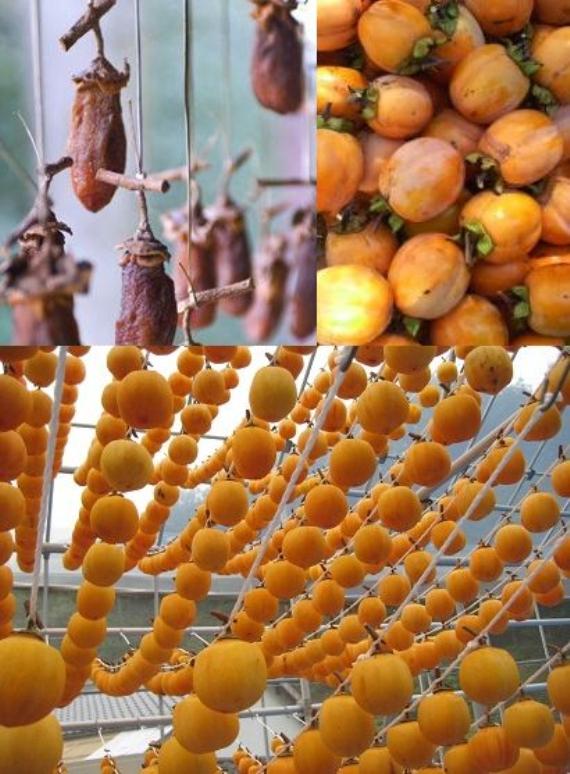 岡山県産「西条柿」(干し柿用渋柿)約9kg ご家庭で、昔懐かしい干し柿作ってみませんか。