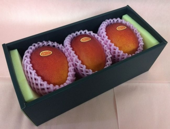 「情熱みやざきブランド!」完熟マンゴー(3個入り) 赤秀 2L(350g以上×3個)旨い!一度食べたら忘れられない味です!