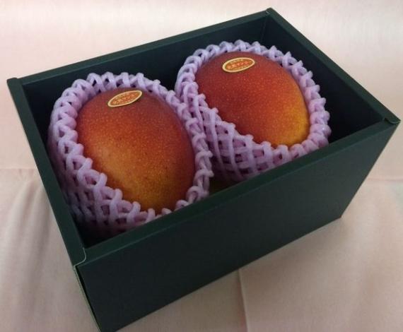 「情熱みやざきブランド!」完熟マンゴー(2個入り) 赤秀 2L(350g以上×2個)旨い!一度食べたら忘れられない味です!