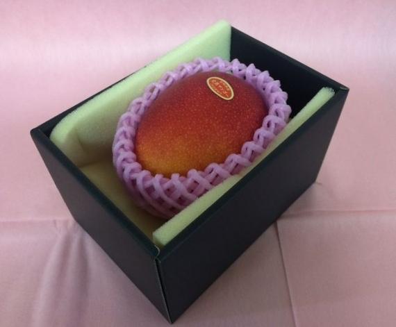 「情熱みやざきブランド!」完熟マンゴー(1個入り) 赤秀 2L(350g以上)旨い!一度食べたら忘れられない味です!