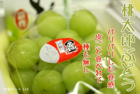★送料無料★皮ごと食べられる桃太郎ぶどう(2kg/3〜5房)