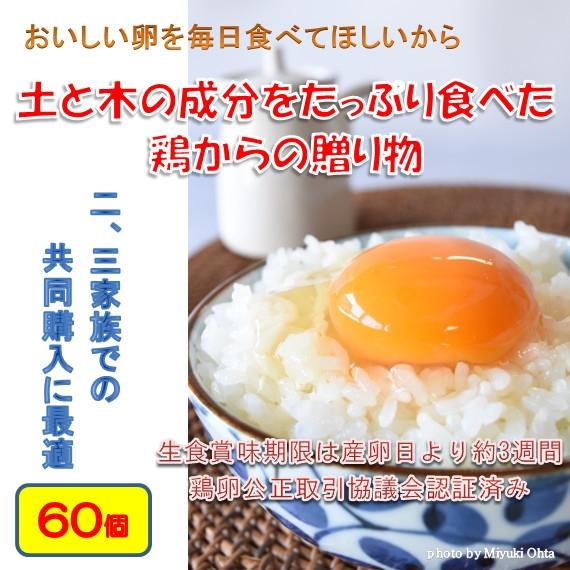 たまご (ブランド卵「満月」) 鶏卵60個