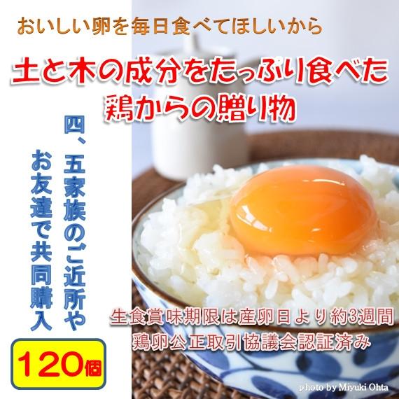 たまご (ブランド卵「満月」) 鶏卵120個