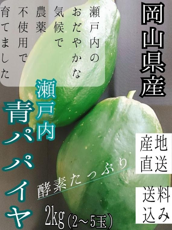 【送料込み】【産地直送】【農薬不使用】 岡山県産 瀬戸内 青パパイヤ 2�s(2〜5玉)
