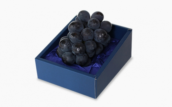 【お試し】【送料込み】ぶどう園から朝採り・産地直送のニューピオーネ(450〜550g)を1房、化粧箱に詰めました。(〜9月中旬)