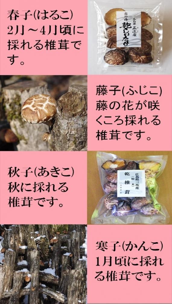 霧の海物語 広島県三次(みよし)産 原木乾しいたけ40g×6袋(こうしん)【送料込】