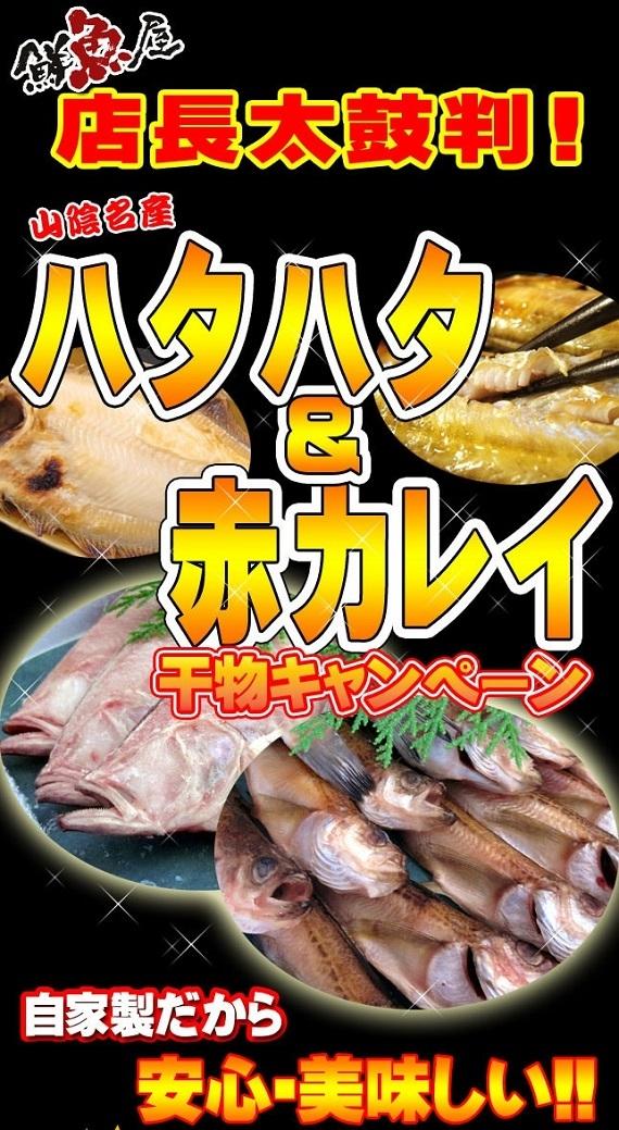 干物セット ハタハタ&赤カレイ【鳥取県・兵庫県産】1kg 送料無料 冷凍便
