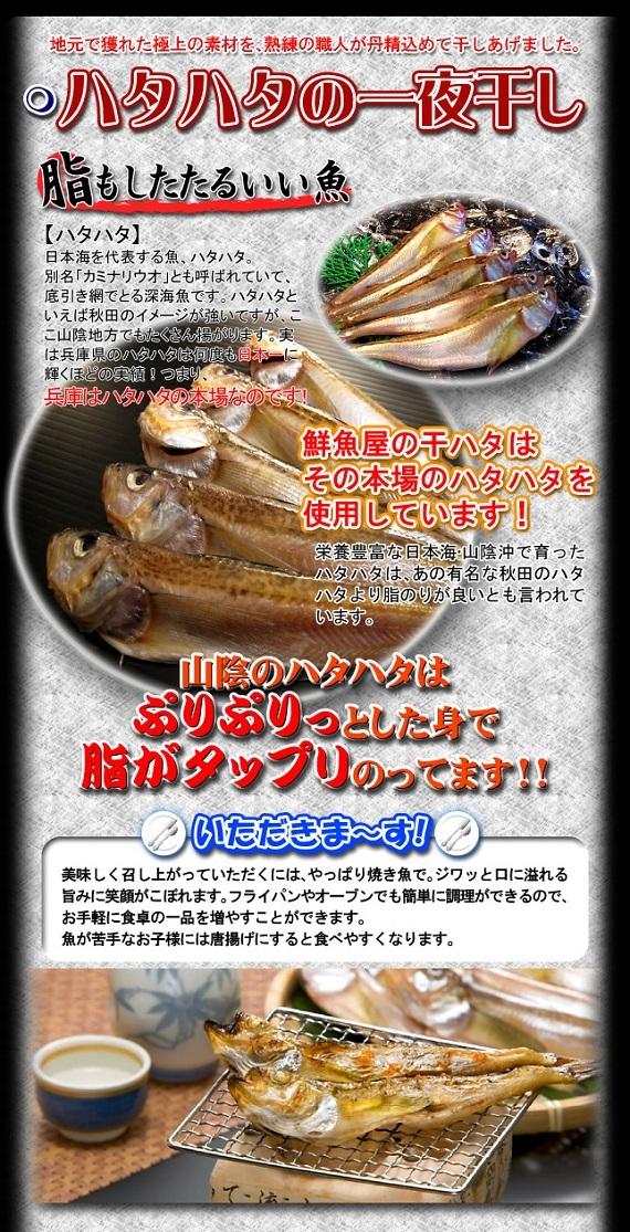 訳ありハタハタ干物【鳥取県・兵庫県産】1kg 送料無料 冷凍便