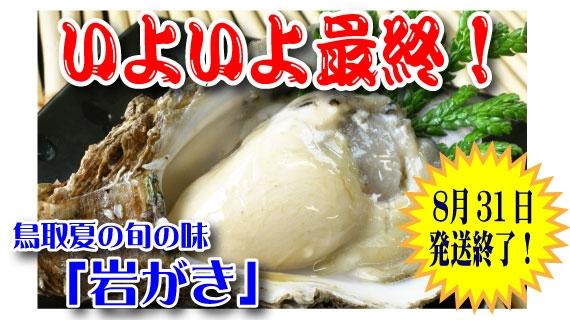 【予約販売】鳥取賀露港 天然岩がき「夏輝」 3~5個セット(貝柱の上側を切ってお届け)