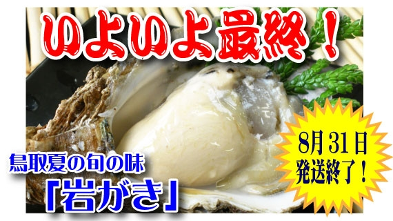 【予約販売】鳥取賀露港 天然岩がき 7~10個セット(貝柱の上側を切ってお届け)