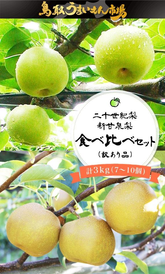 新甘泉梨・二十世紀梨食べ比べセット(訳あり品)【鳥取うまいもん市場】