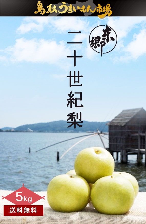 東郷二十世紀梨 5kg2L16玉【鳥取うまいもん市場】
