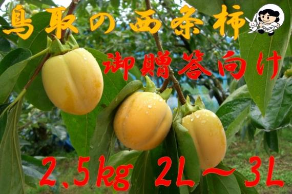 【鳥取特産】西条柿 2.5kg 2L〜3L【贈答用】【送料無料】