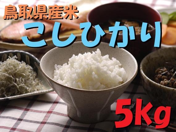 鳥取県産米 コシヒカリ 精米5kg 【令和2年度産】