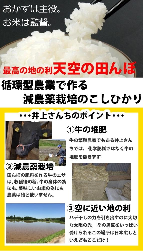 【充足感抜群 仁多の天空米 井上さんちのコシヒカリ5kg】2年産【送料込み】