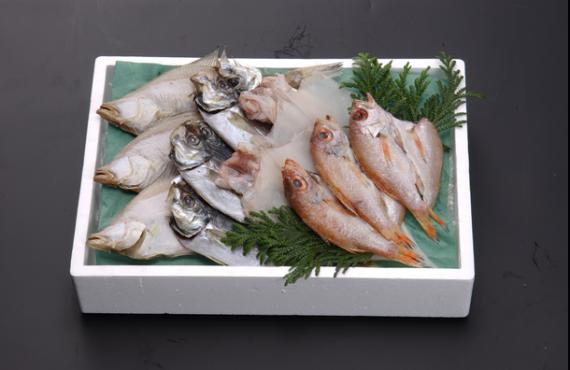 漁師手作り干物【漬魚・魚加工品】