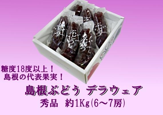 島根県産デラウェア 1Kg箱(6〜7房)