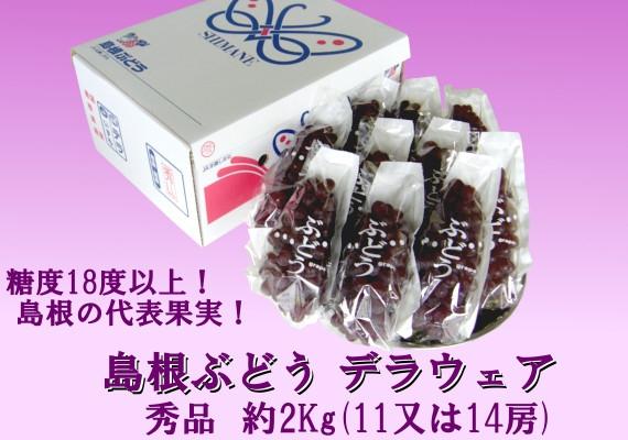 島根県産デラウェア 2Kg箱(11〜14房)