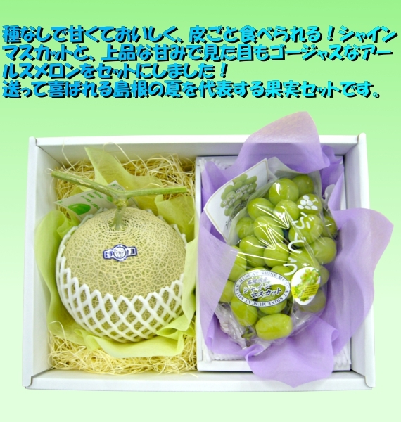 島根県産 シャインマスカット&アールスメロンセット 【フルーツ・ぶどう・メロン】【お中元2021】