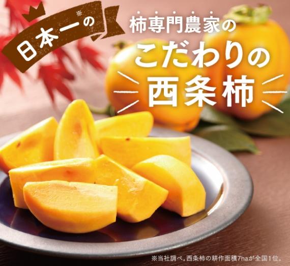 【送料無料】西条柿 たしな味 5kg 3L(24玉)【フルーツ】