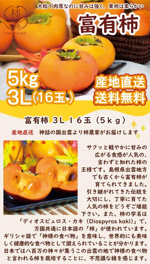 【送料無料】富有柿 3L 16玉(5kg)【お歳暮2020】【フルーツ】