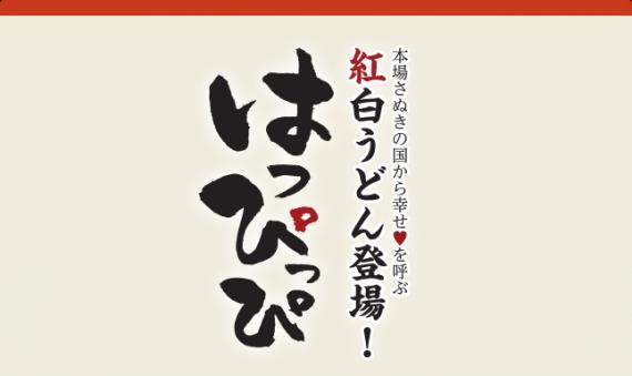 紅白うどん はっぴっぴ(1人前) だし醤油付き【香川県 讃岐うどん ゆらくや】