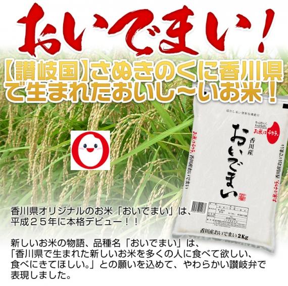 令和2年(2020年) 新米 香川県産 おいでまい<特A評価> 10kg(2kg×5袋) 【送料無料】【白米】【米袋は真空包装】