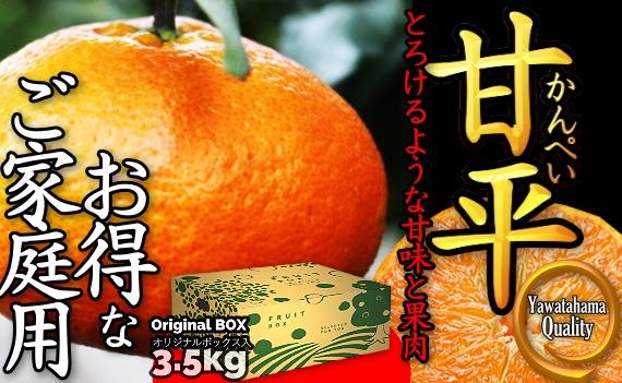 """《送料無料》愛媛の """"高級"""" 柑橘!! 「甘平(かんぺい)!! お得なご家庭向け商品」3.5kg入《2月からお届け!!》"""