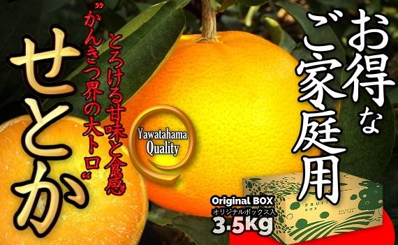 《送料無料》愛媛の高級柑橘の代名詞「せとか 」!! お得なご家庭向け商品 3.5kg入!!《2月中旬からお届け!!》