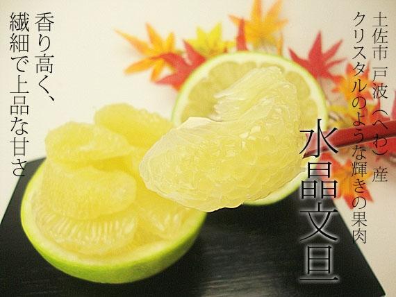 【送料無料】高知県土佐市産・水晶文旦 秀品5kgご贈答用7玉入り