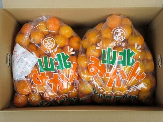 【送料無料】会員様用 山北みかんご家庭用小粒10kg(5kg袋×2)