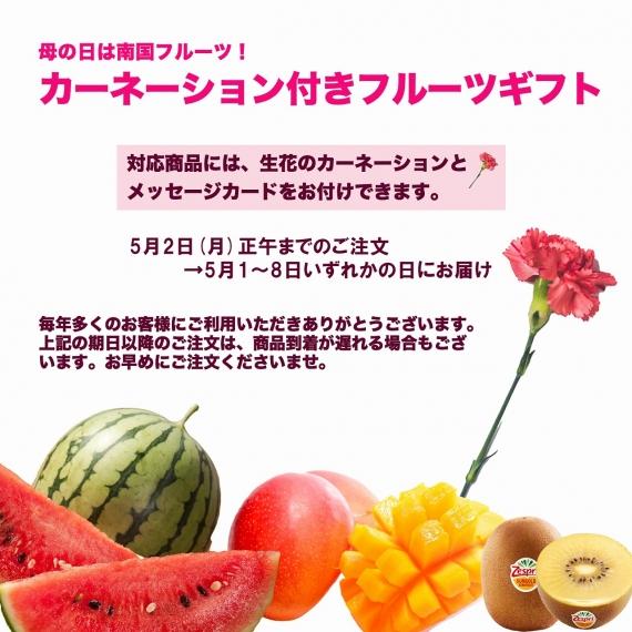 【送料無料】宮崎産 完熟マンゴー 2L3玉 【季節お薦め】【贈答人気】【フルーツ】【父の日2021】【グルメ・おつまみ】