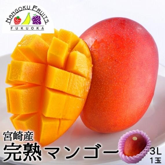【送料無料】宮崎産 完熟マンゴー 3L1玉 【お中元2021】【フルーツ】【父の日2021】【グルメ・おつまみ】