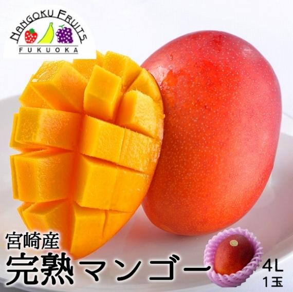 【送料無料】宮崎産 完熟マンゴー 4L1玉【お中元2021】【フルーツ】【父の日2021】【グルメ・おつまみ】
