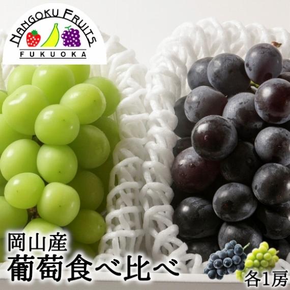 【送料無料】岡山産シャインマスカット&ピオーネ 約1kg(約500g各1房) 葡萄詰合せ【フルーツ】