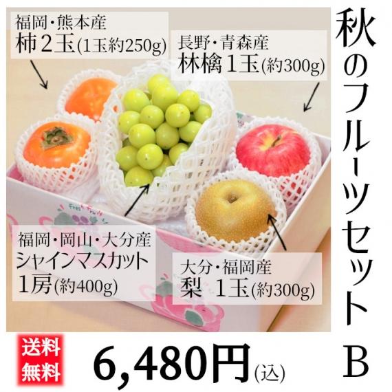 【送料無料】秋のフルーツセット B 【贈答人気】【季節お薦め】【フルーツギフト】【秋】